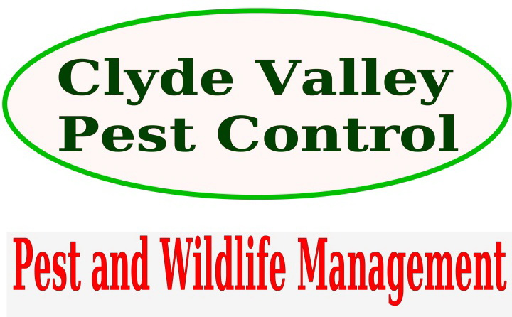Welcome to Clyde Valley Pest Control